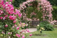 Jardin-de-Chaalis-(6).jpg