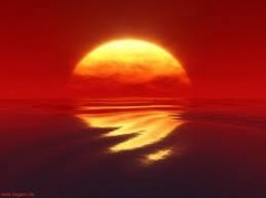 amour-soleil.jpg