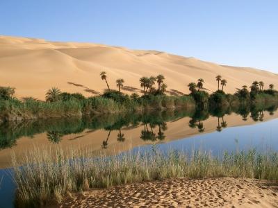 Oasis_in_Libya.jpg